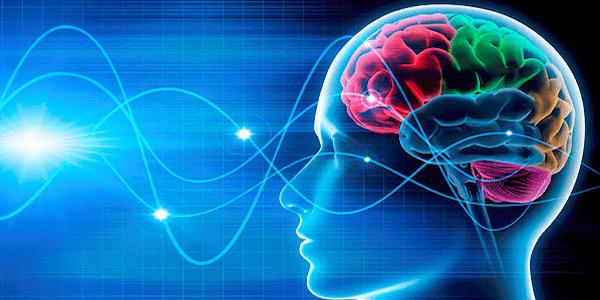 تاثیر شنوایی بر رشد مغز