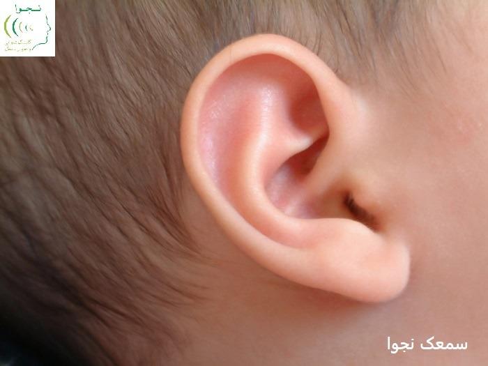 نحوه کارکرد سیستم شنوایی انسان