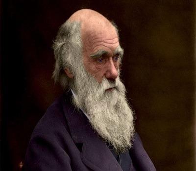 داروین